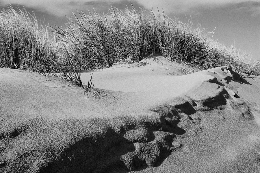 The sand dunes at the gateway national recreation area seemed a perfect candidate for black and white here i used nik silver efex pro 2 and went with the