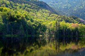 12 - New Hampshire Reflections