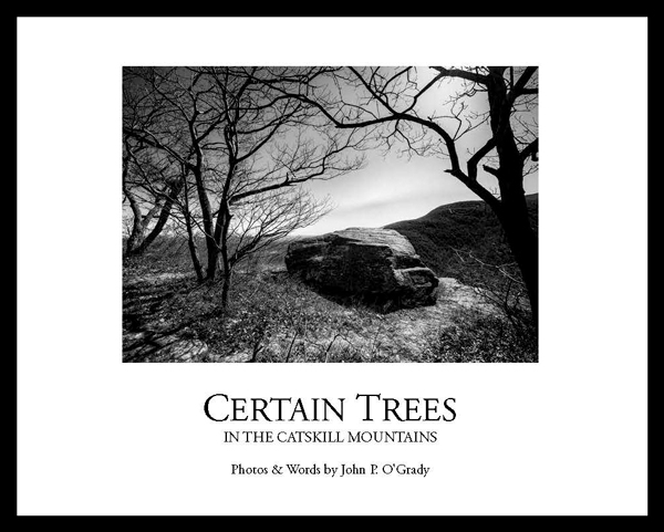 Certain-Trees-Cover-jpeg-1